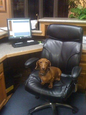 Pete, the receptionist